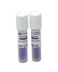 Terragene Indicador Biológico para Peróxido de Hidrogeno; 100u/Box